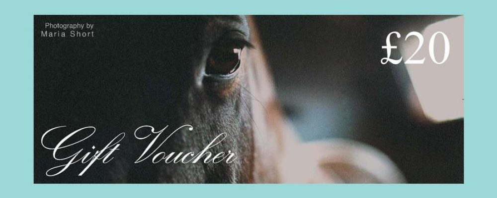 Gift Vouchers UK  – setting up the site