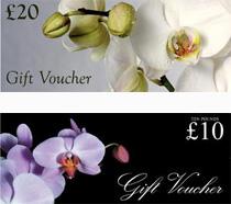 Garden Gift Vouchers