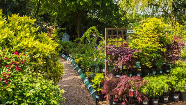 Bickerdikes Garden Centre Ltd