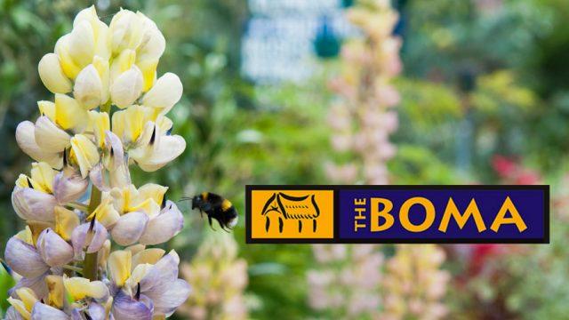 Boma Garden Centre