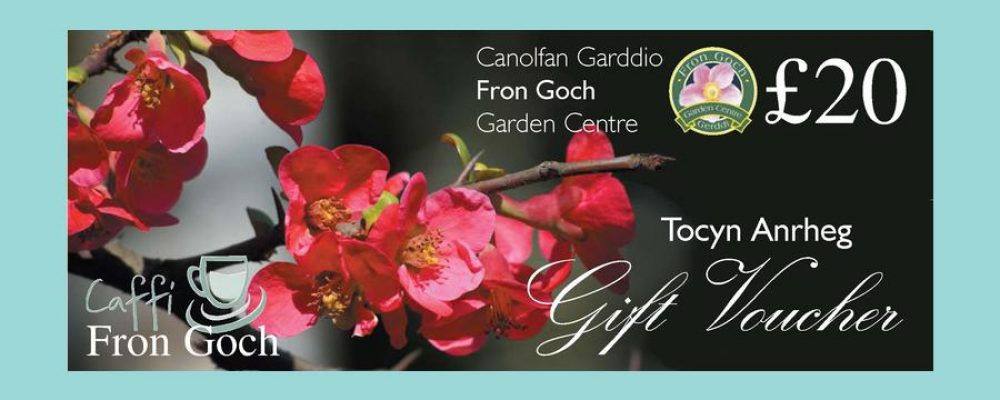 Gift Voucher UK – image is important